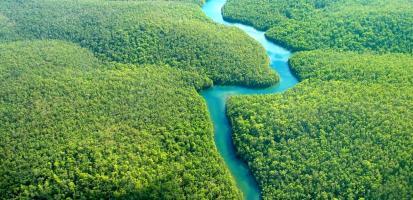 Amazonie francaise