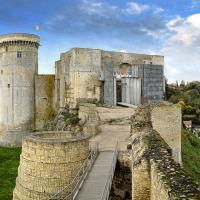 Chateau falaise