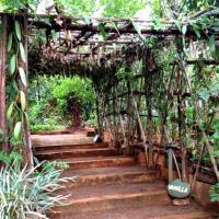 Jardin epices