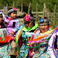 Les mapuche