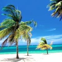 Playas del este