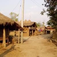 Sauraha