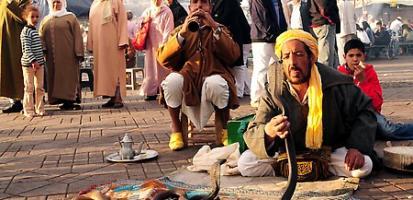 Charmeurs de serpents