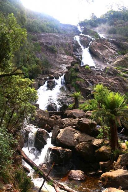 Columba falls2