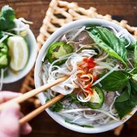 Gastro soupe pho