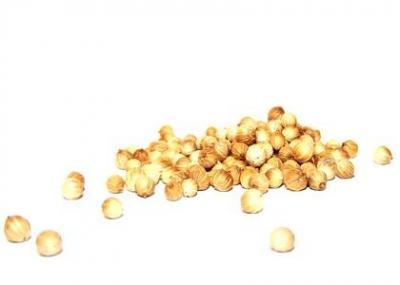 Graines de coriandre 2