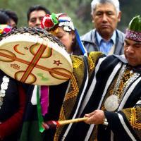Indiens mapuche