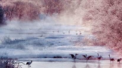 L ile d hokkaido hiver