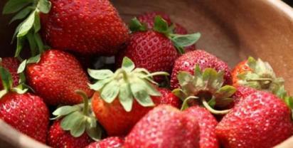 La veritable fraise