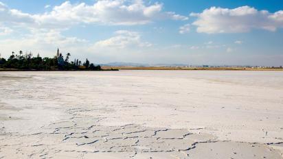 Le lac sale de larnaka