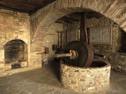 Le musee de l olivier de l huile d olive