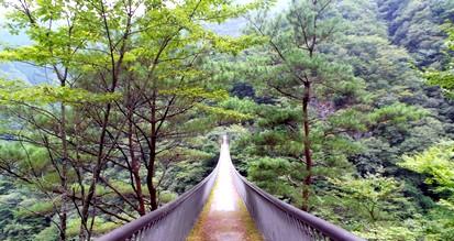 Le parc national de kirishima yaku2
