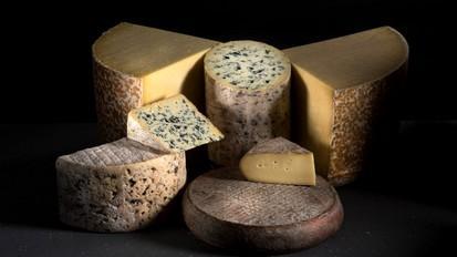 Les excellents fromages aop d auvergne