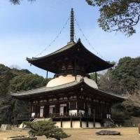 Temples negoro dera