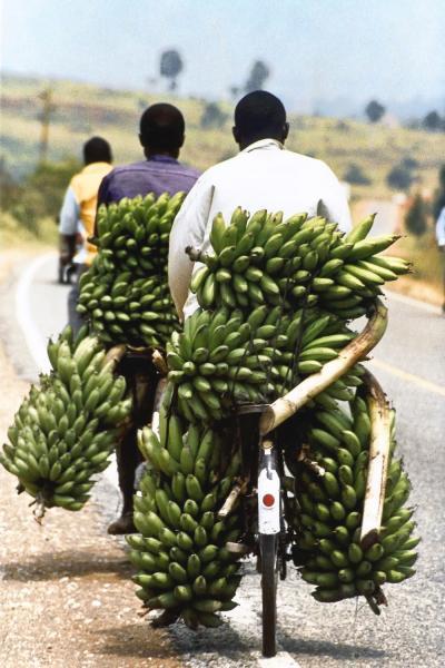 Vendeurs de bananes
